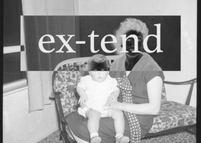 ex-tend ss 1