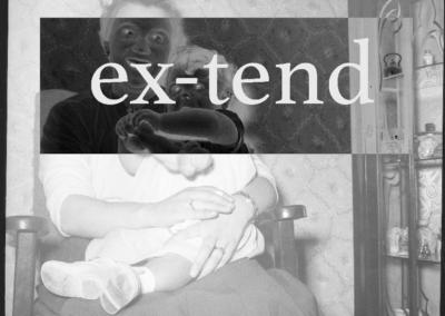ex-tend ss 3